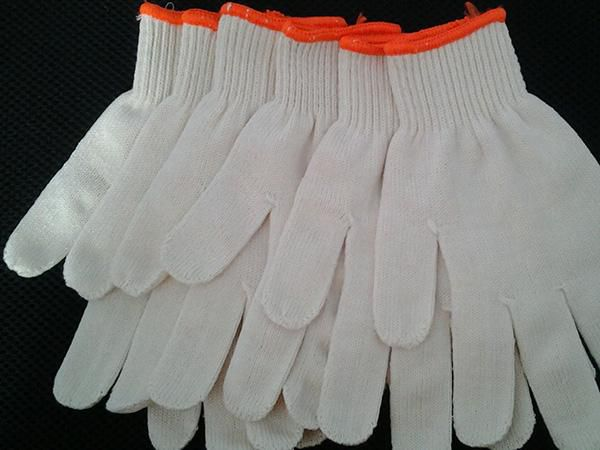 Cotton glove Customizable