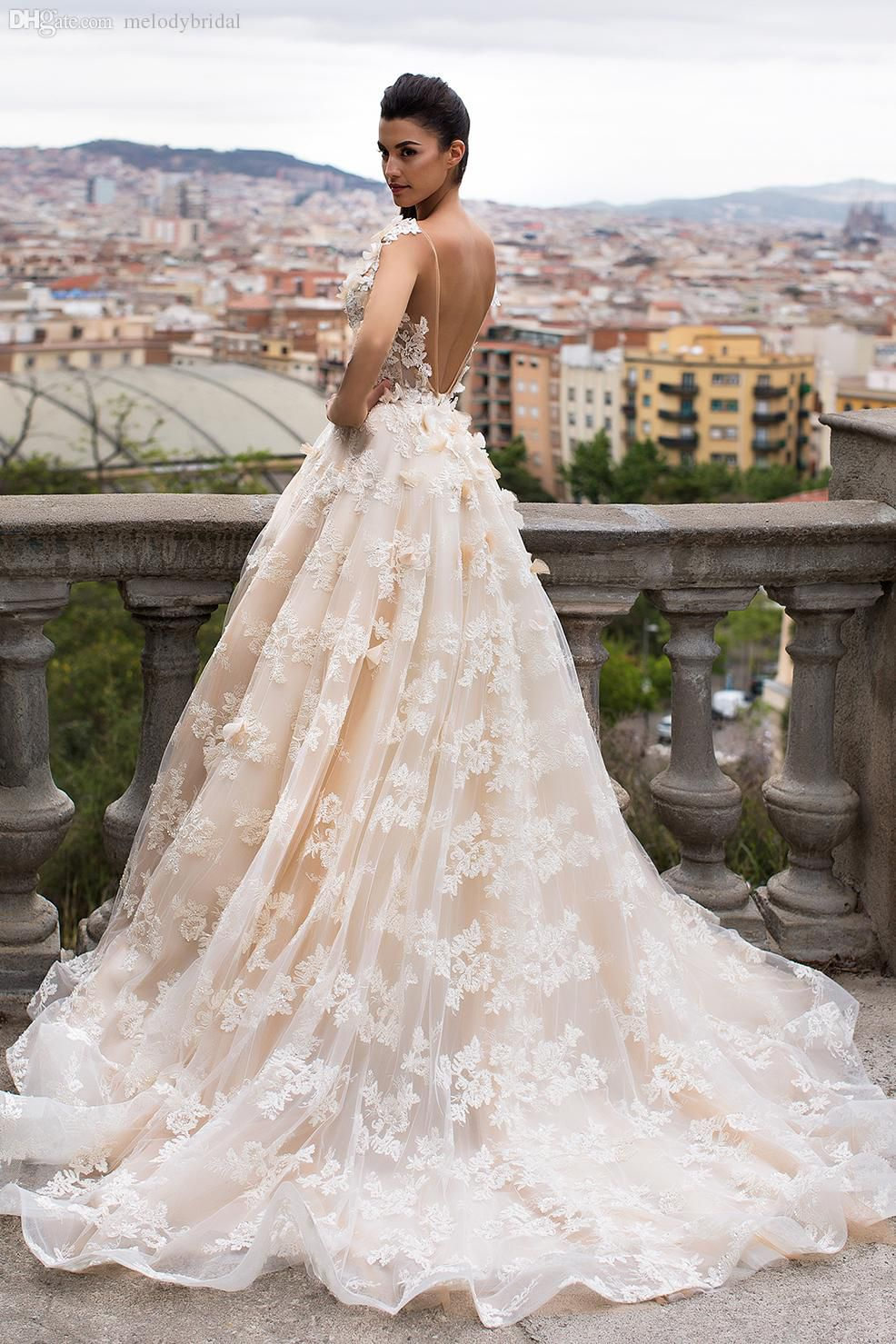 Gorgeous Sheer A Line Backless Wedding Dresses 2017 Puffy Lace