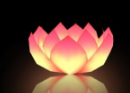 lotus flower light is fashionable and Special offer good quiltydurable and worth buying