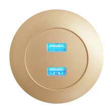 2018 Best Selling Hot Sell New Product Champagne Gold Dual USB Ports Furniture Hardware Accessories Inserted for Mobile Phone Charger Socket