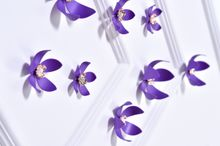 Flower 3D Wall Stickers Purple color(10pcs/box) (purple)