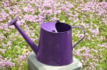 Watering pot-8