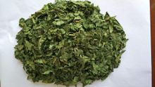 Dehydrated celery leaf marlin trade contains protein, fat, carbohydrates, cellulose, minerals and other nutrients