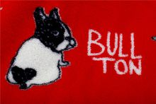 Dog Pet Supplies Coral Velvet Flannel Throw Knee Blanket Children Blanket Baby Air Conditioning Mini Throw