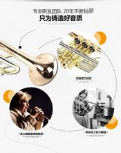 20 17 New Top Trumpet TR-305G B flat phosphor bronze trumpet musical instrument trumpet music performances