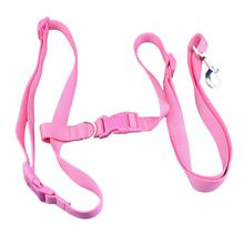 Wholesale Adjustable Nylon Dog Pet Rope Products Slip Pet Dog Whisperer Cesar Slip Training Leash Lead Collar
