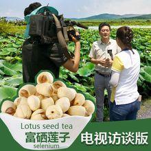 Lotus selenium Lotus seed tea