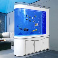 Bullet - head fish tank living room ecology