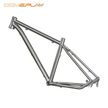 Comeplay Cheap Inner Hidden Brake Best Mountain Bike Frame MTB Frame